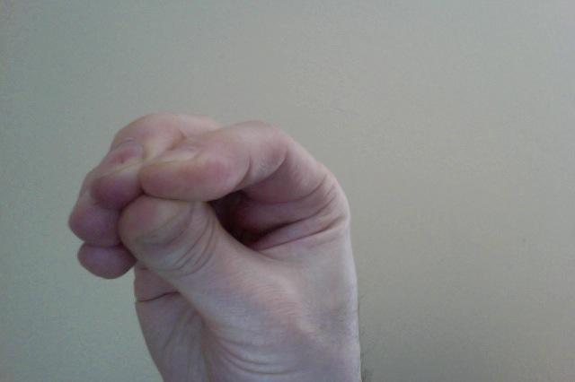 Crane's beak fist